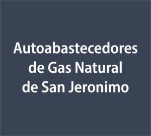 Logo Abastecedora de Gas Natural de San Jeronimo